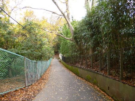 614奈良散歩2.JPG