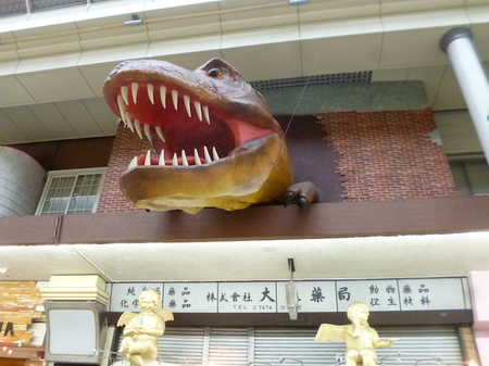 618岡山4.JPG