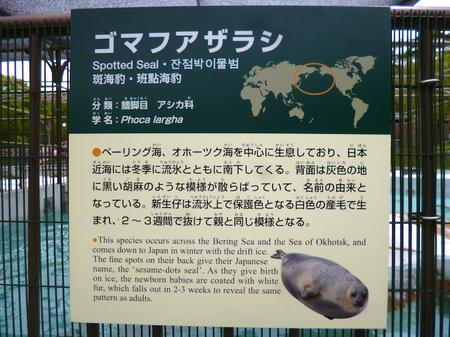 633円山動物園4.JPG