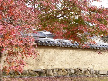 655奈良散歩5.JPG
