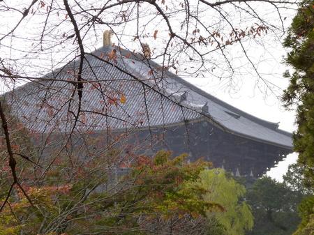 655奈良散歩6.JPG