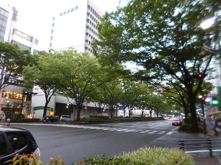 695東京〜仙台18.JPG