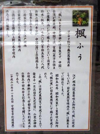 725二荒山神社23.JPG