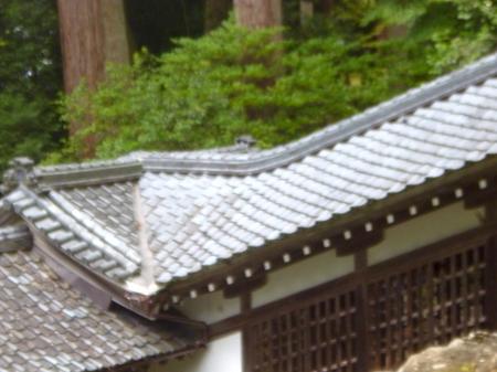 755永平寺8.JPG