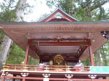 845二荒山神社1.JPG
