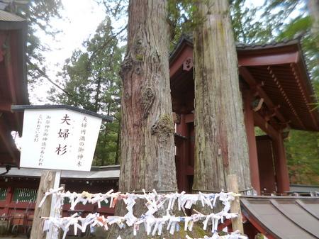 845二荒山神社12.JPG