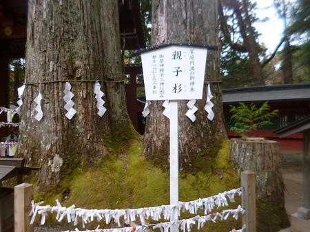 845二荒山神社6.JPG