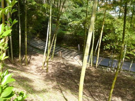 849瑞巌寺15.JPG