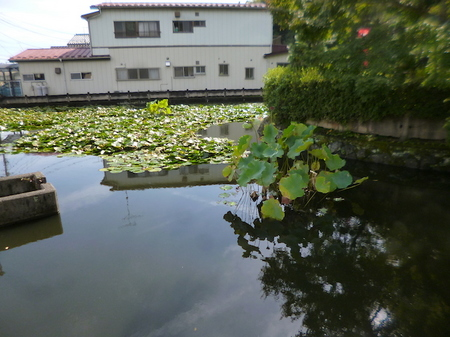 849瑞巌寺20.JPG