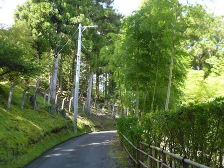 849瑞巌寺8.JPG