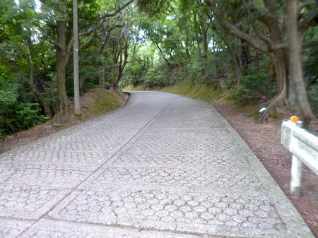 865藤島神社5.JPG