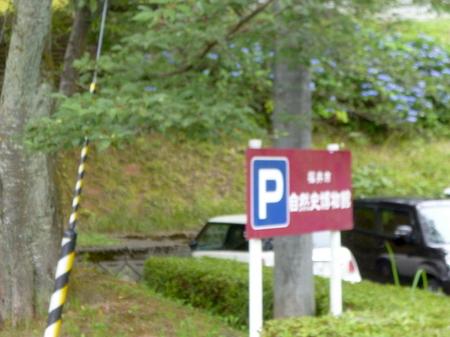 865藤島神社6.JPG