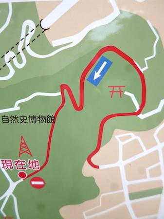 865藤島神社9.JPG
