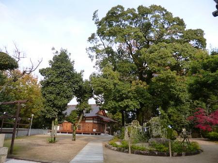 890阿智神社17.JPG