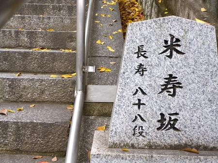 909阿智神社16.JPG