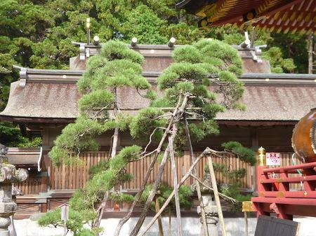 937鹽竈神社18.JPG