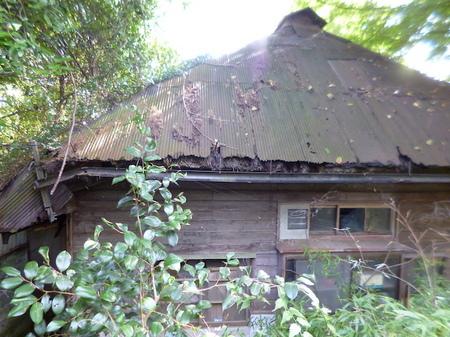 957鹽竈神社13.JPG