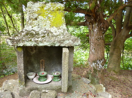 981瑠璃宝の池・琴電屋島5.JPG